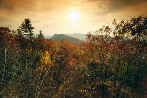 040 Autumn Copes View